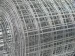Welded wire mesh,1/4'',1/2'' welded wire mesh for sale