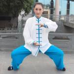 Wu Dang Clothes Tao Suits Wushu Uniform Tai Chi Wu Dang Uniform Kung Fu Suits