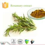 Rosmarinus Officinalis Natural Herbal Extracts , Pure Natural Plant Extracts Brown Yellow Color