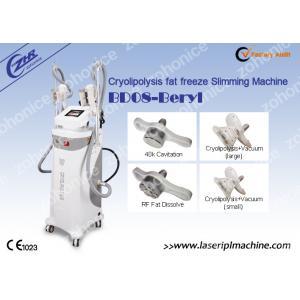 China RF Fat Dissolve Cryolipolysis Slimming Machine   for Beauty salon on sale
