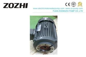 China Light Weight Hollow Shaft Motor Pressure Pumps Clockwise Rotation ISO Approval on sale