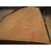 Rotary Cut Dillenia Veneer for Plywood