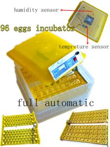 China 2014 Model EW-96 Automatic Turning Small Egg Incubator Prices (Automatic Humidity Control) on sale