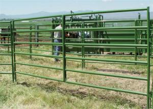 China Stainless steel portable horse yard panels cattle handling systems size customized on sale