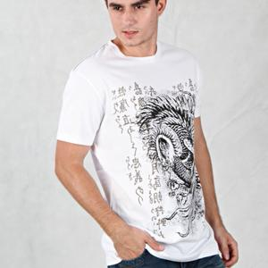 China 2014 printing 100% cotton men t-shirts with short sleeves on sale