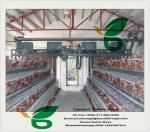 China 2m 24nests 3 tier 96birds battery cages for chicken farm Africa wholesale