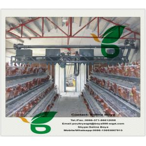 China 2m 24nests 3 tier 96birds battery cages for chicken farm Africa on sale