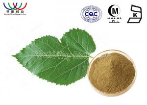 China Weight Loss Mulberry Bark Extract  , Water Soluble White Mulberry Leaf Extract 1000 Mg on sale