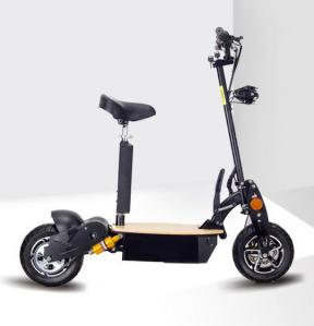 China Two Wheel Electric Scooter EVO Scooters 1600Watts 48V Speed 55Km/H Brushless Motor PowerBoards on sale