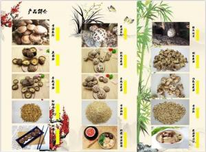 China Factory Price Premium Bulk Dried Shiitake Mushroom Series /Dried Black Fungus Series on sale