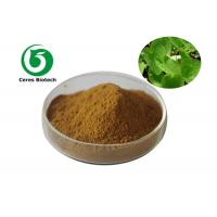 China Medical Food Grade Epimedium Extract Powder Flavone 5% For Enhancing Male Sexuality on sale