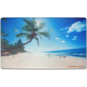 China Luxurious Non slip floor mats water resistant, home floor mat, floor mat commercial on sale