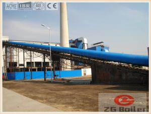 China Palm Kernel Biomass Power Plant Boiler on sale