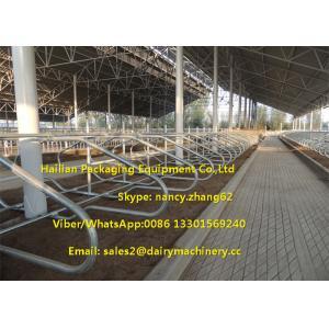 China Le lien de galvanisation d'immersion chaude calent librement des pièces d'équipement de ferme de vache à granges de laiterie on sale