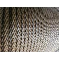 galvanized steel wire rope steel wire