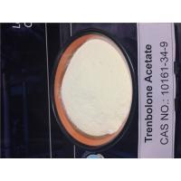 CAS 10161-34-9 Trenbolone Powder Medical Intermediate Chemical For Bulking Cycle