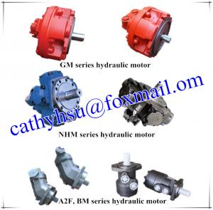 China hydraulic motor manufacturer from China on sale