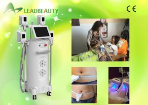 China 2016 factory directly sell best cryolipolysis machine fat freezing for dirtributor on sale