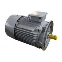 3 Phase 2 Pole Induction Motor Cast Iron Y2-132M1-2 10kw Small Variable Speed