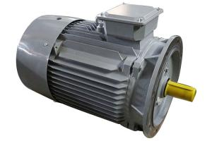 China 3 Phase 2 Pole Induction Motor Cast Iron Y2-132M1-2 10kw Small Variable Speed on sale
