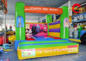 China Disney Cartoon Inflatable Bounce House , PVC HD Printing Inflatable Bouncy Castle on sale