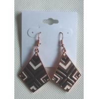 2013 wholesale  fashion earring