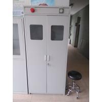 Galvanized Steel Lab Storage Cabinet Laboratory Furniture Gas Cabinet Steel Gas Cylinder Cabinet 900x450x1800mm