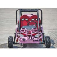 110cc Kids Off Road Go Kart Two Seats Rear Rack With CVT Transmission / Reverse