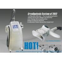 China Fat Freezing cryolipolysis equipment slimming, weight loss Liposuction machine on sale