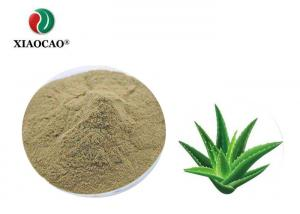 China Organic Aloe Vera Spray Dried Powder Cold Dry Storage Promoting Blood Circulation on sale