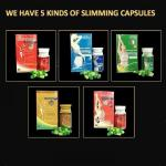All Natural Fat Loss Tablets , Fat Reducing Pills Herbal Extraction For Women