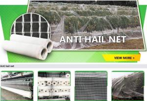 China bird protection net, net trap,bird net,anti-bird net,mist net,pe tarpaulin,tarpaulin roll,shade net,mesh net,monoflament on sale