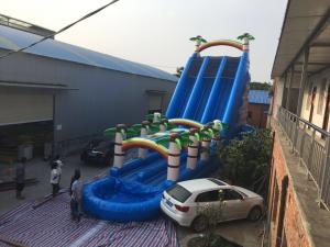 China Coconut Tree Inflatable Double Water Slide With Splash Pool SGS Certificate on sale