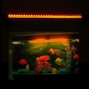 China Custom 7W Par38 AC85 - 264V 12000k LED Reef Aquarium Light bar  on sale