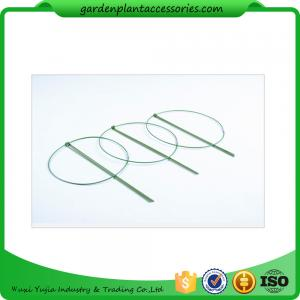 China 3 Rings Green Garden Plant Supports , Circular Plant Supports Plastic Coated on sale