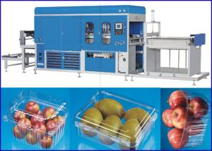 China Plastic sheet Vacuum Thermoforming Machine For Super market Fruit and Vege containers on sale