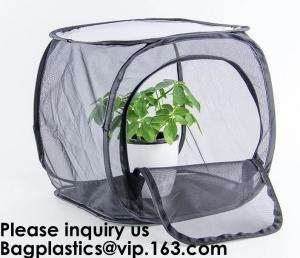 China Agricultural Greenhouses for Tomato Planting,Pop-Up Tomato Plant Protector Serves as a Mini Greenhouse to Accelerate Gro on sale