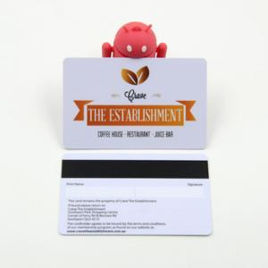 China Track 3 Data Encoded Magnetic Stripe Gift Cards , Magnetic Swipe Cards For Supermarket on sale