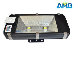 China Outdoor IP65 Waterproof 80W Led Landscape Floodlight For Garden, Park and Tunnel on sale