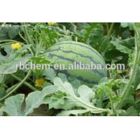 organic fertilizer for melones