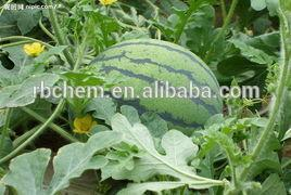 China organic fertilizer for melones on sale