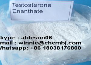 China Testosterone Enanthate Injection Raw Testosterone Powder Bodybuilding CAS 315-37-7 on sale