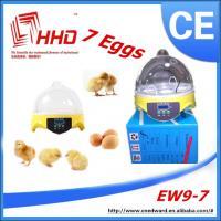 Wholesale educational toys for kids/Quail Egg Incubator/educational toys for teens