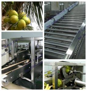 China coconut processing plant, coconut processing line machine on sale