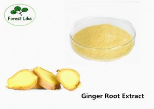 China Natural Health care Plant Extract Powder Gingerols 5% 10% Ginger Root Extract on sale
