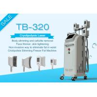 China 4 Handles Weight Loss Cryolipolysis Fat Freeze Slimming Machine For Salon on sale