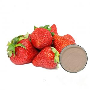 China Food Grade Fruit Strawberry Extract Powder For Pharmaceutical Capsules on sale