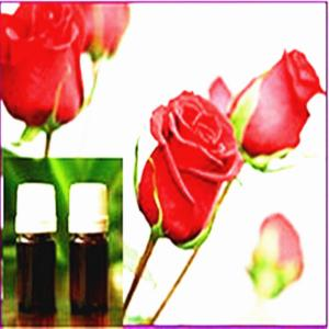 China Óleo essencial de Rosa on sale