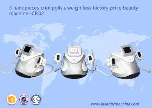 China 3 Handpieces Cryolipolysis Slimming Machine Weight Loss Beauty Equipment CR02 on sale
