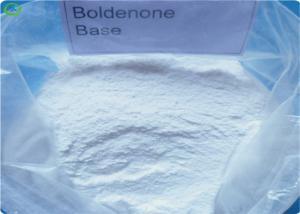 China 99% Safe Bodybuilding Steroids Powder Boldenone Equipoise CAS 846-48-0 on sale